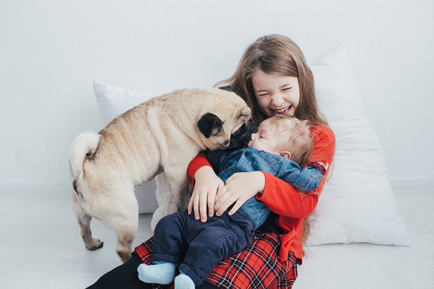 friendly_family_&_pug_kol_4_1